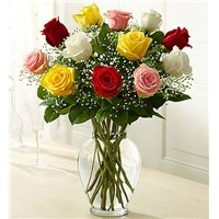 12-dozen-multi-colored-roses-in-a-vase